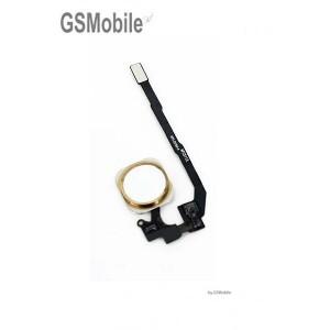 Botão home para iPhone SE dourado - Venda de componentes de substituição da Apple
